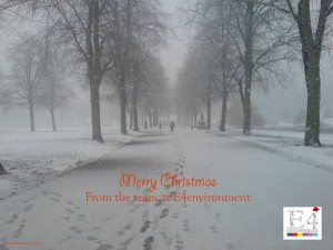 Merry Christmas from E4environment